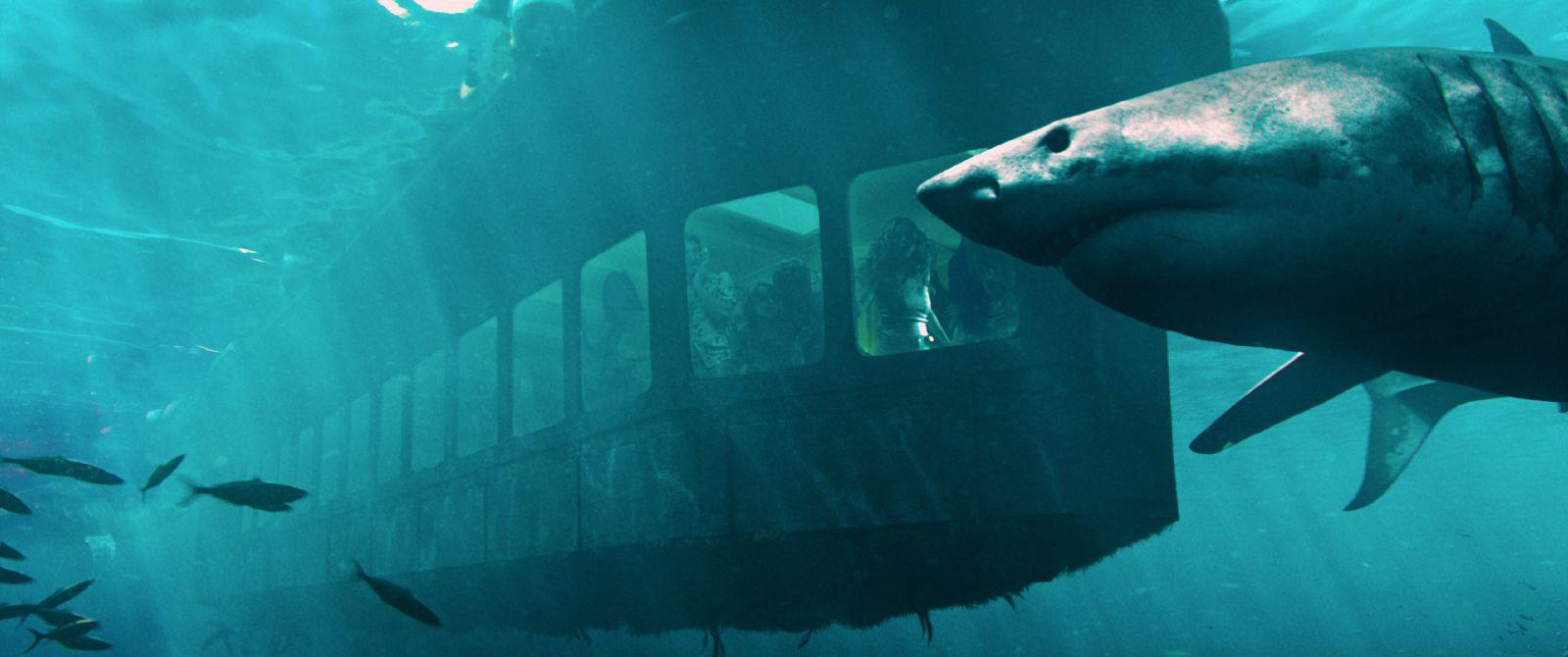 死 迷宮 マヤ 海底 の 47m 古代 の